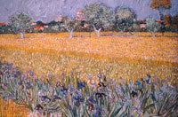 Image 04: Field with Flowers near Arles