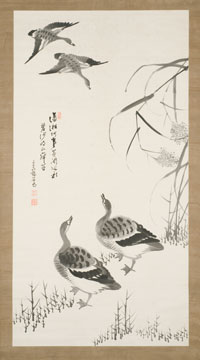 Image 05: Geese and Reeds