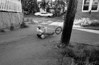 Image 03: Go Cart/Two Kids