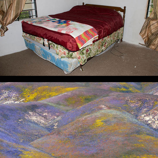 Frank and Bevs Bed, Gary, IN<br/>Hills on San Andreas Fault, Southern California