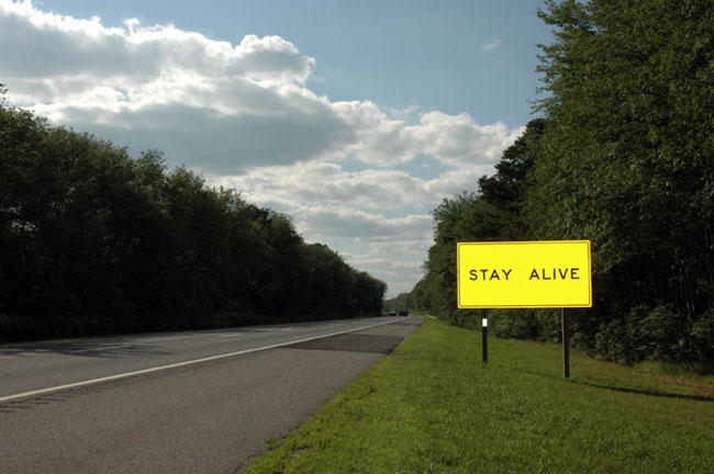 Stay Alive, Camden County, NJ